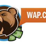 Стоит ли монетизировать сайт партнеркой Wap.Click