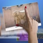 Как изменить размер фото